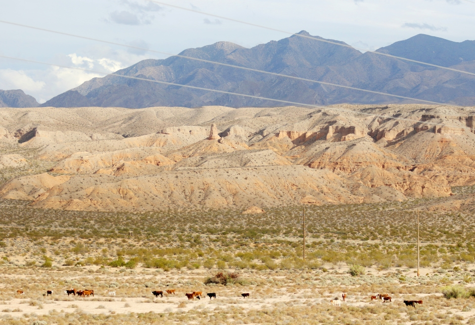 Gold Butte national monument proposal vs. Bundy Ranchers; Oregon trial reaction.